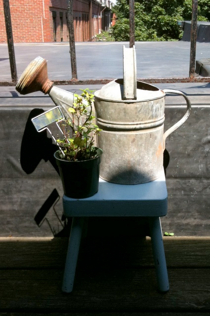 Fruit & Flower Anniversary?  Maybe in the UK.  In JFJ-land it means Antique-ish Watering Can!